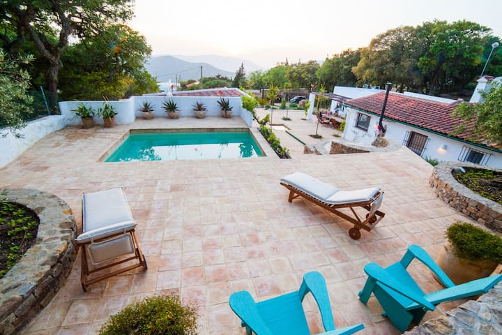 Pool and terrace area with sun loungers and pool chairs