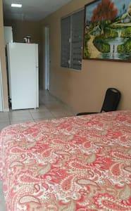 Apartamento Studio en Humacao PR-> Todo Privado - Humacao - Condominium