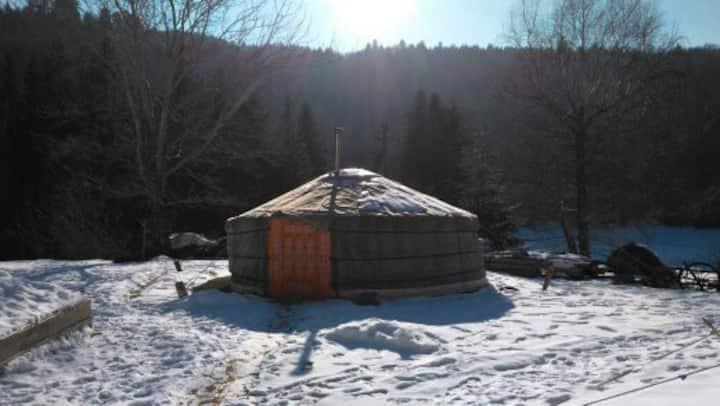 """dormir dans notre yourte mongole """"dulaan"""""""