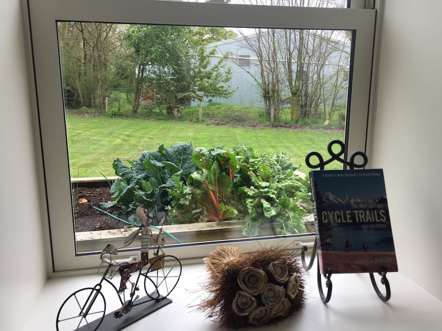 Looking out of Historic bedroom window on to our veggie garden.