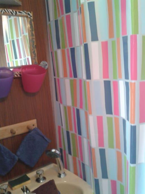 salle de bain lavabo et douche