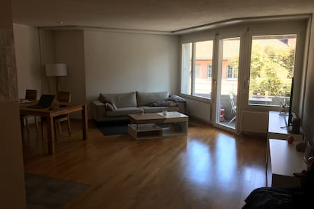 Big appartment near city center and river - Zürich