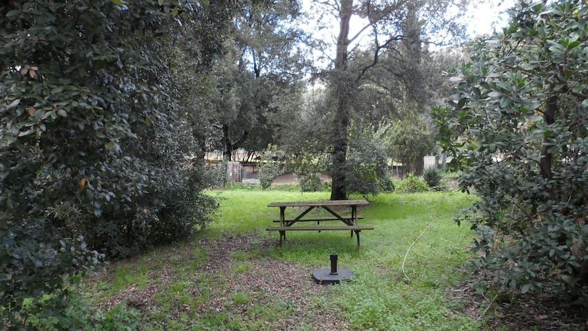 Rez de jardin calme et serein