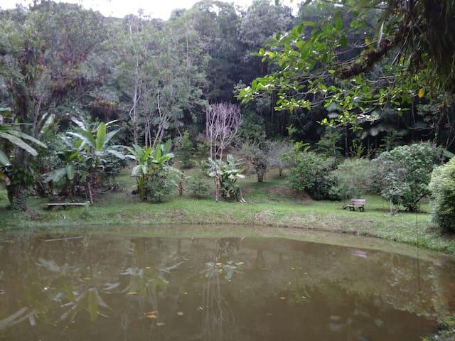 Ecositio: curta a natureza sem deixar pegadas