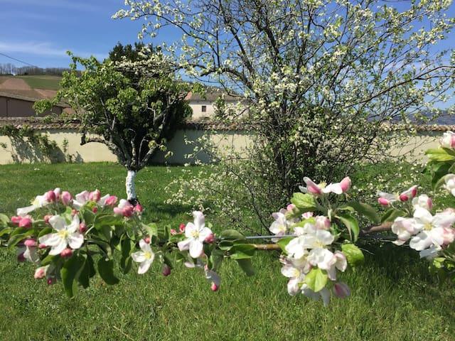 2 Chambres-maison au cœur des vignes du Beaujolais
