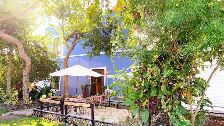 Hermoso pequeño hotel en lo más bello de Merida 1