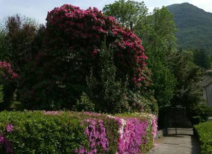 independent mansarda in villa- magnificent garden. - Mergozzo - 別荘