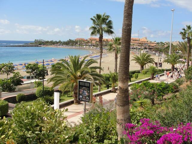 Apartament,nice view and comfort! - Los Cristianos