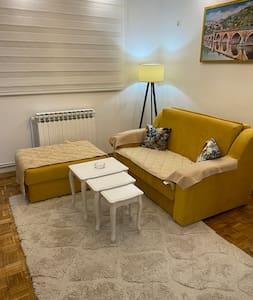 Apartment Milev