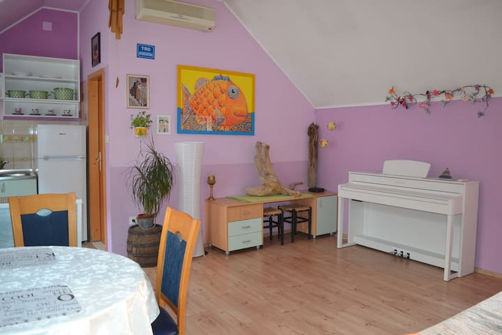 Cozy apartment Lorka in City Center