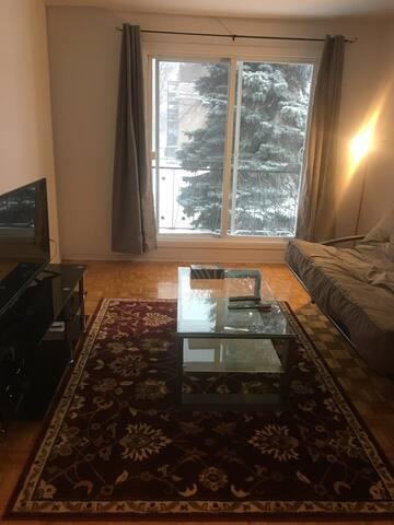 Ta maison-voyage 10 minutes à Montréal