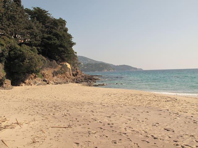 Pramousquier Petite villa vue mer 10' de la plage - Le Lavandou - Hus