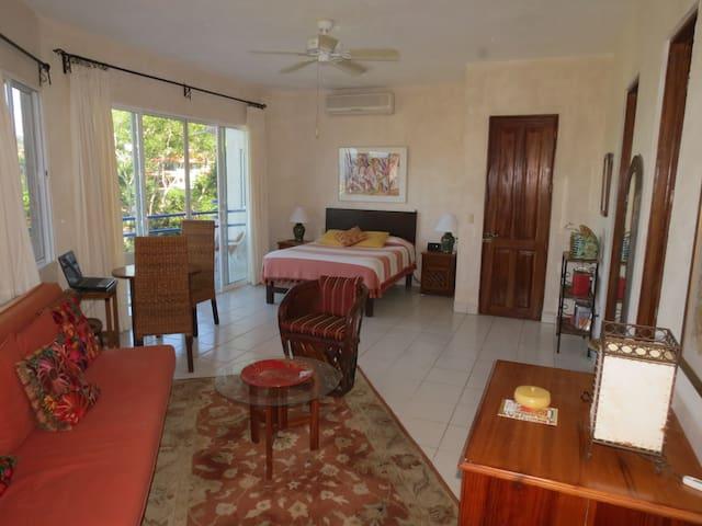 Casa Linda in La Manzanilla del Mar , Jalisco, Mex - La Manzanilla del Mar - Apartment