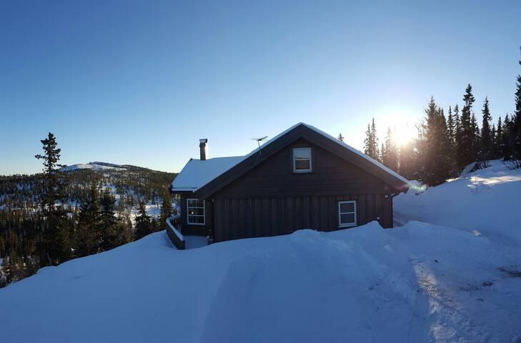 Flott hytte i Tuddal, Telemark - Tuddal - Blockhütte