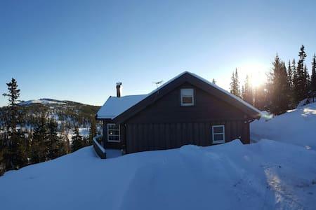 Flott hytte i Tuddal, Telemark - Tuddal