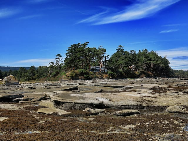Dunlop Point - Hornby Island - Rumah