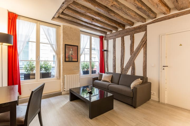 Lovely apt, St-Germain des Prés