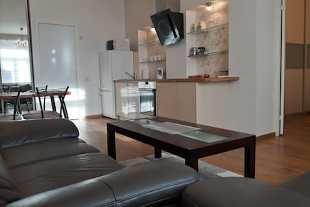 Kaunas Center Apartment, Laisves av - 考納斯 - 公寓