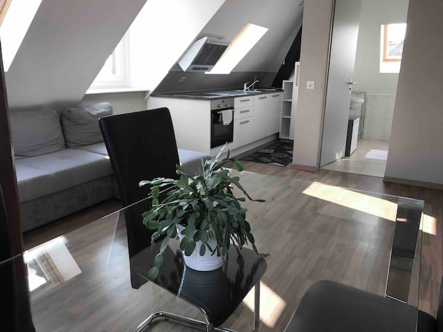 065 Apart. 1 min from Lausanne & Parking