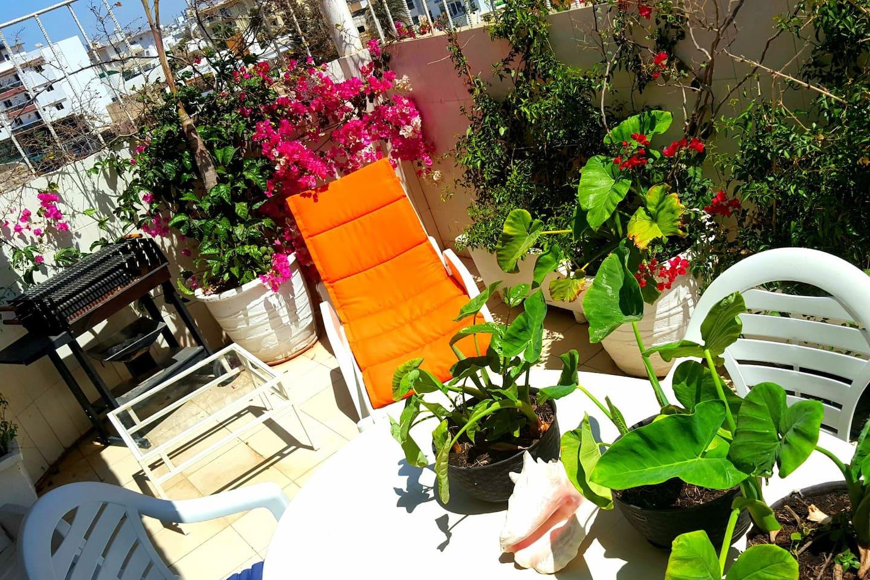 Terrasse de 20m² équipée de 2 transats matelas, une table Terrasse de 4 chaises un barbecue, de belles plantes tropicales, un ciel bleu et beaucoup de soleil !!