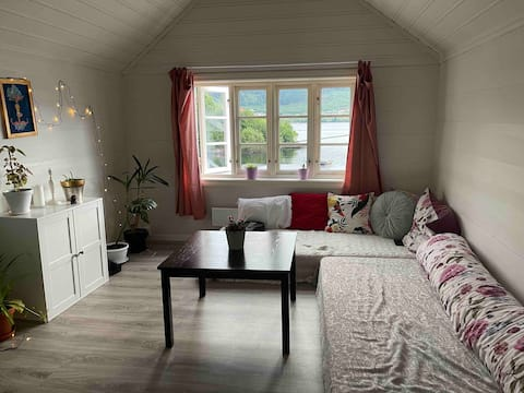 Lovely vegan friendly apartment with free parking