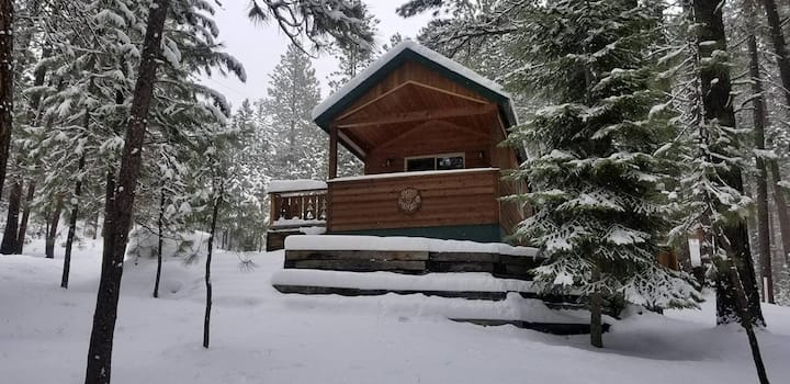 Lazy Moose Cabin