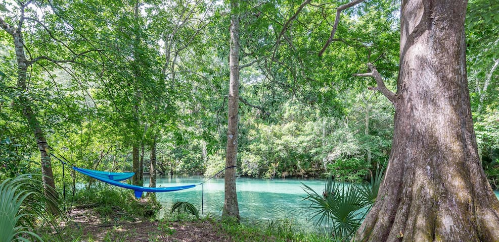 Camp directly on the clear waters of Weeki Wachee