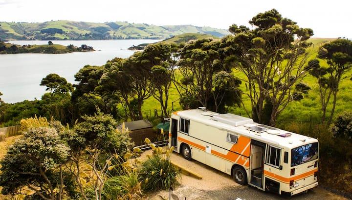 Panorama Bus- Otago Peninsula - Dunedin