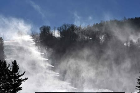 Ski Mountain-The Hermitage -- Complete House - Blowing Rock