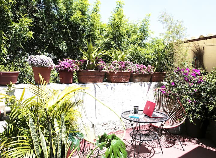 Apartment with  lovely Terrace Roma Norte