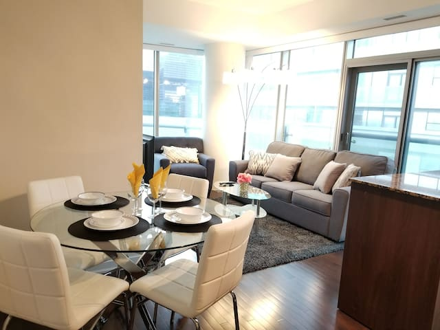 BRAND NEW 2 BEDROOM APARTMENT IN DOWNTOWN TORONTO