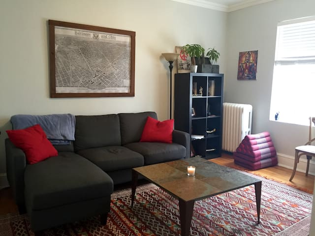 Light Filled Georgetown Condo