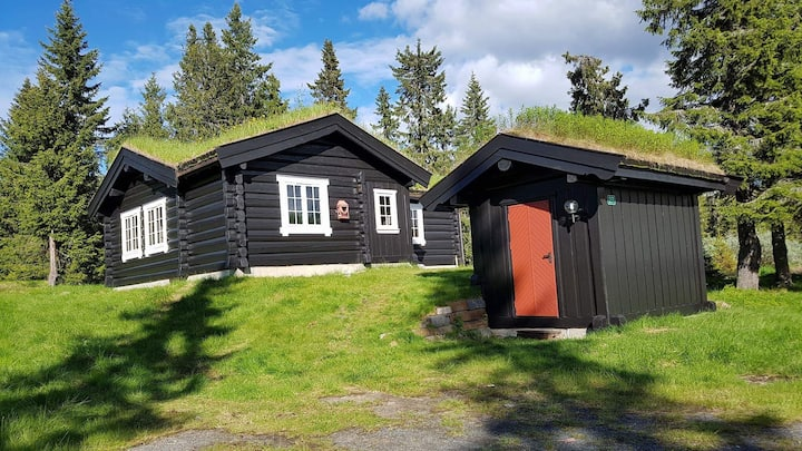 Cosy cabin at popular Hafjell, ski inn/out