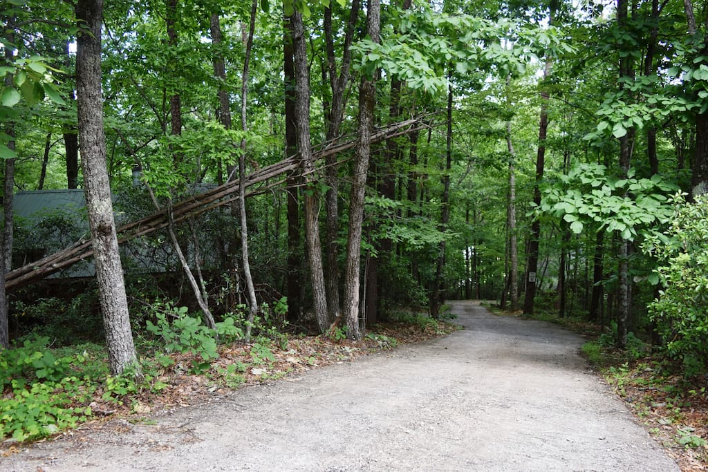 Shared driveway with cabin at the end of the road.  Mountopia is on the left and other cabin at bottom on right, but not visible.