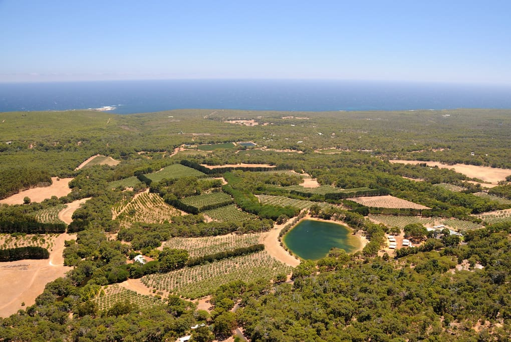 Nestled in Organic Olive groves, close to the beach.