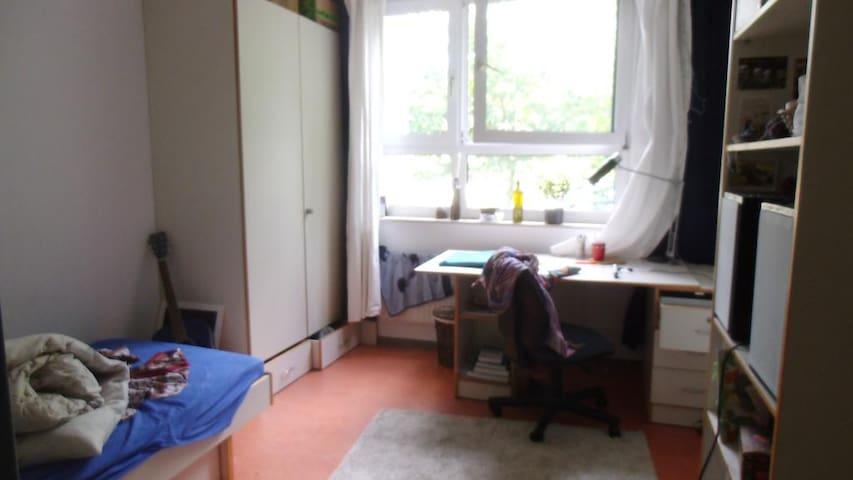 Room in Neuenheimer Feld
