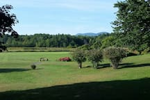 Summer view from the Kitchen of Mount Greylock