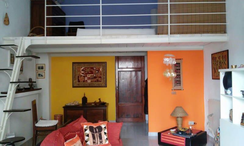 Color's house - pisa - Hus