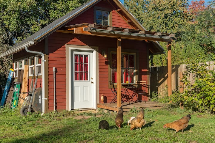 Chicken Little Cottage: rustic cabin in the city!