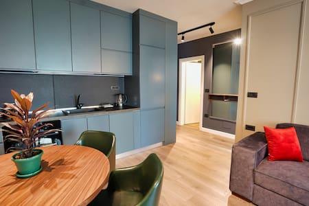 Modern 1 BR apartment w/ AC, WIFI, TV