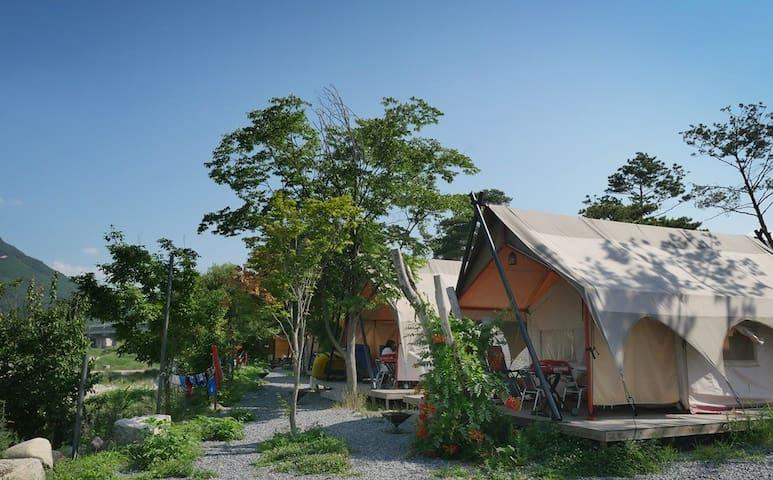 Pine tree camping- Standard tent/ 파인트리글램핑 - Idong-myeon, Pocheon-si