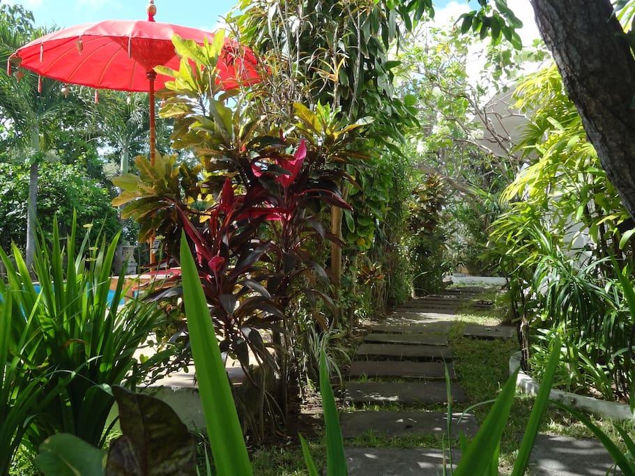 Tropischer Innengarten