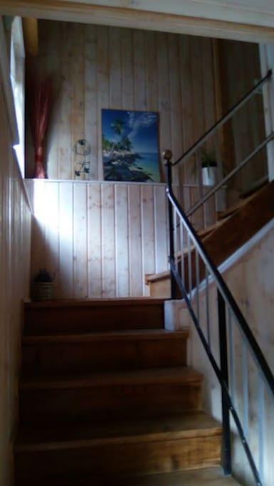 cage escalier