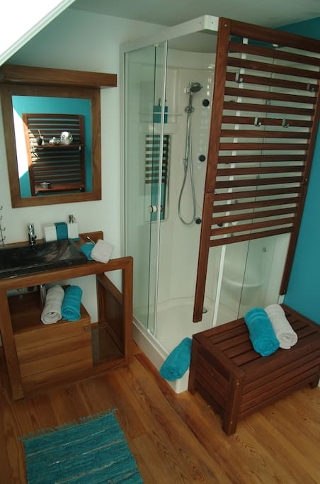 La salle de douche « ambiance orientale » comprend un évier, une douche, un WC , un sèche cheveux, shampoing et savon.