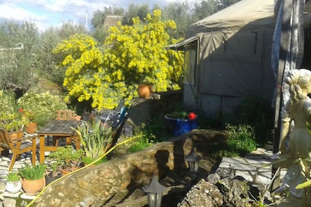 relax in a Yurt with lovely garden