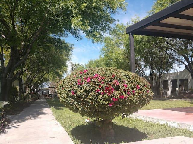 HOTEL Hacienda Antigua   Cupula 2 HUESPEDES