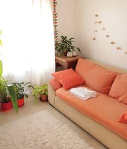 Amplia habitación luminosa, silenciosa, San Isidro