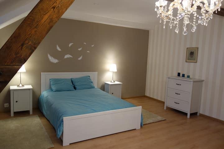Sonnige, gemütliche Wohnung inkl. BaselCard