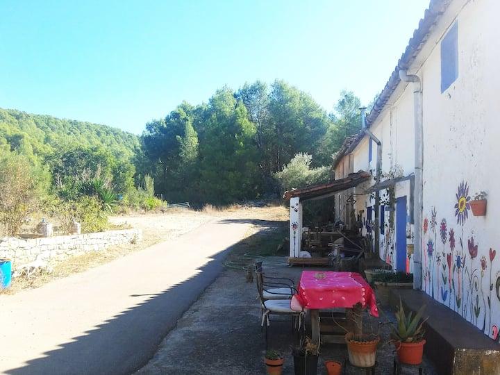 Bonita masia rural a pié de bosque en  Atzeneta