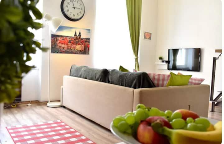 Amazing flat Karlín